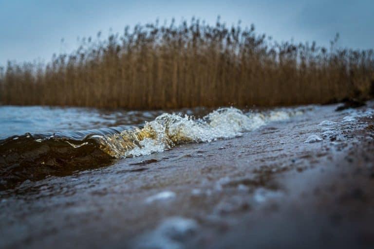 5 bonnes raisons de se rendre à la plage en automne
